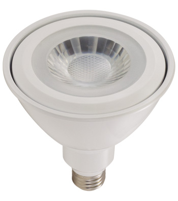 17 Watt PAR38 LED Lamp, E26 Base