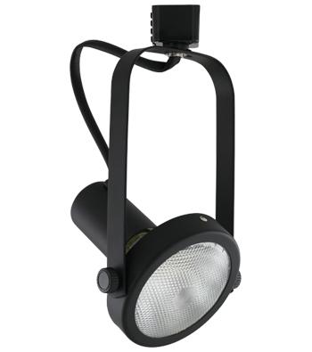 ATHENA Line Voltage Track Fixture for Halogen or LED PAR Lamps