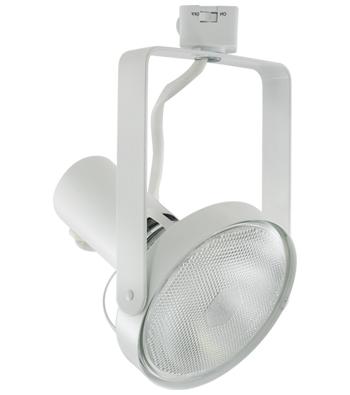 ALEXIS Line Voltage Track Fixture for PAR38 Lamps