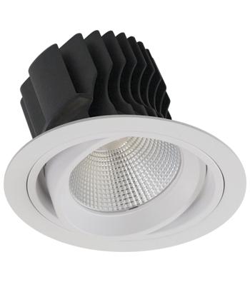 Sigma 4 Round Gimbal Trim LED Fixture